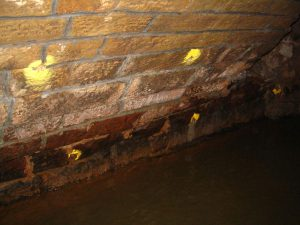 Ram Services Limited - Pressure Pointing Masonry Bridge Repairs